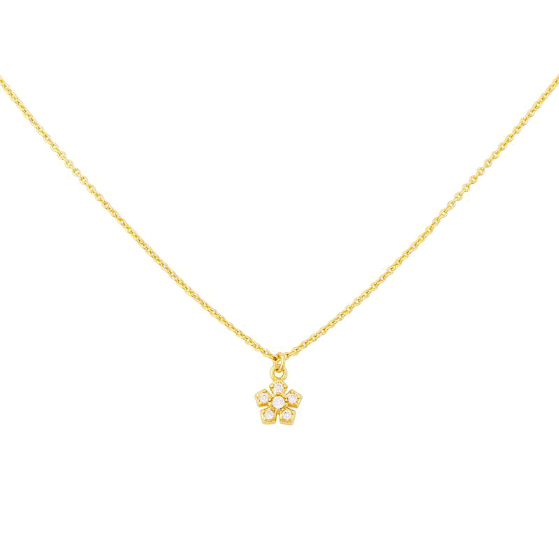 Uncommon James: Sophia Necklace - Gold
